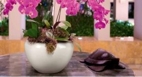 Purple Ceramic Flower Pot