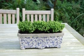 Aged ceramic  Balcony planter Aged Ceramic