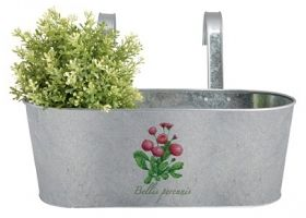 Botanicae balcony pot old zinc