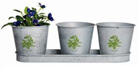 Botanicae pots on tray in old zinc