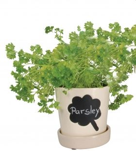Flowerpot with message board
