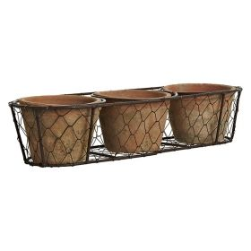 3 pots in a row in wire basket aged terra cotta