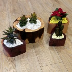 Handmade Wood Log Planter Set