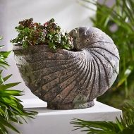 Aged ceramic  Sea Shell Planter